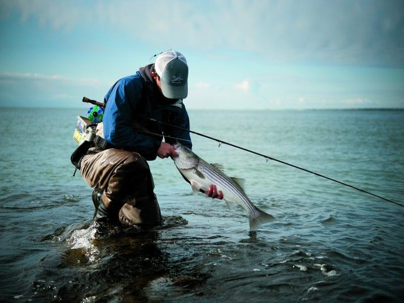 Preparing For A Fishing Trip